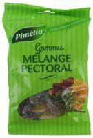 Pimelia Gommes Mélange Pectoral Sachet/100g à Saint-Vallier