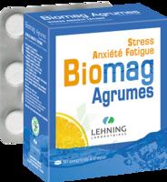 Lehning Biomag Comprimés à Croquer Agrumes B/90 à Saint-Vallier
