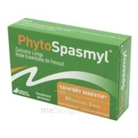 Phytospasmyl Caps B/60 à Saint-Vallier