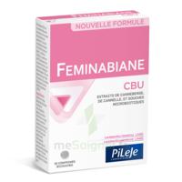 Pileje Feminabiane Cbu 30 Comprimés Bicouches à Saint-Vallier