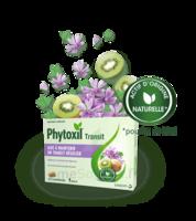 Phytoxil Transit Comprimés B/20 à Saint-Vallier
