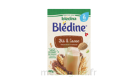 Blédina Blédine Céréales Instantanées Cacao 2ème âge B/400g à Saint-Vallier