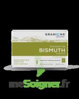 Granions De Bismuth 2 Mg/2 Ml S Buv 10amp/2ml à Saint-Vallier