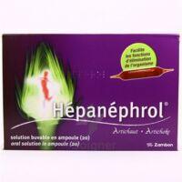Hepanephrol, Solution Buvable En Ampoule à Saint-Vallier