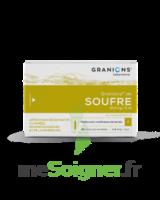 Granions De Soufre 19,5 Mg/2 Ml S Buv 30amp/2ml à Saint-Vallier