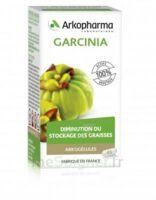 Arkogélules Garcinia Gélules Fl/45 à Saint-Vallier