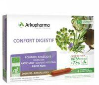 Arkofluide Bio Ultraextract Solution Buvable Confort Digestif 20 Ampoules/10ml à Saint-Vallier