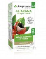 Arkogélules Guarana Bio Gélules Fl/45 à Saint-Vallier