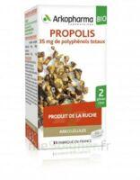 Arkogélules Propolis Bio Gélules Fl/45 à Saint-Vallier