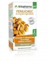 Arkogélules Fenugrec Bio Gélules Fl/40 à Saint-Vallier