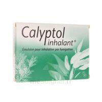 Calyptol Inhalant, émulsion Pour Inhalation Par Fumigation à Saint-Vallier