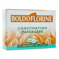 Boldoflorine 1 Cpr Pell Constipation Passagère B/40 à Saint-Vallier