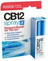 Cb 12 Spray Haleine Fraîche 15ml à Saint-Vallier