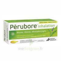 PERUBORE Caps inhalation par vapeur inhalation Plq/15 à Saint-Vallier