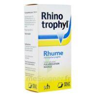 RHINOTROPHYL Solution pour pulvérisation nasale 1Fl/12ml à Saint-Vallier