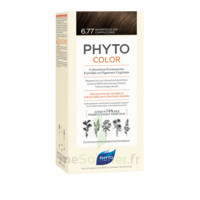 Phytocolor Kit coloration permanente 6.77 Marron clair cappuccino à Saint-Vallier