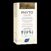 Phytocolor Kit coloration permanente 8.3 Blond clair doré à Saint-Vallier