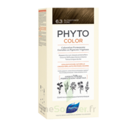 Phytocolor Kit Coloration Permanente 6.3 Blond Foncé Doré à Saint-Vallier