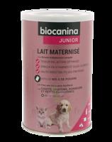Biocanina Lait Poudre Maternisé B/400g à Saint-Vallier