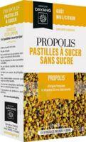Dayang Propolis Pastilles 20 Pastilles à Saint-Vallier