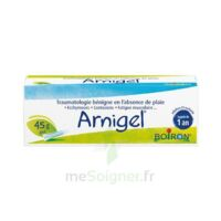 Boiron Arnigel Gel T(alumino-plastique)/45g à Saint-Vallier