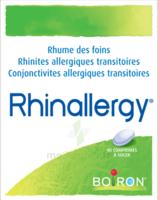Boiron Rhinallergy Comprimés B/40 à Saint-Vallier