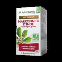 Arkogélules Marronnier D'inde Bio Gélules Fl/45 à Saint-Vallier