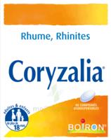 Boiron Coryzalia Comprimés Orodispersibles à Saint-Vallier