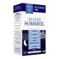 Dayang Sommeil Mélatonine 1 Mg 14 Comprimés à Saint-Vallier